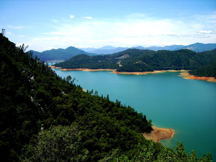 Lake Shasta - Markell Smith Gallery