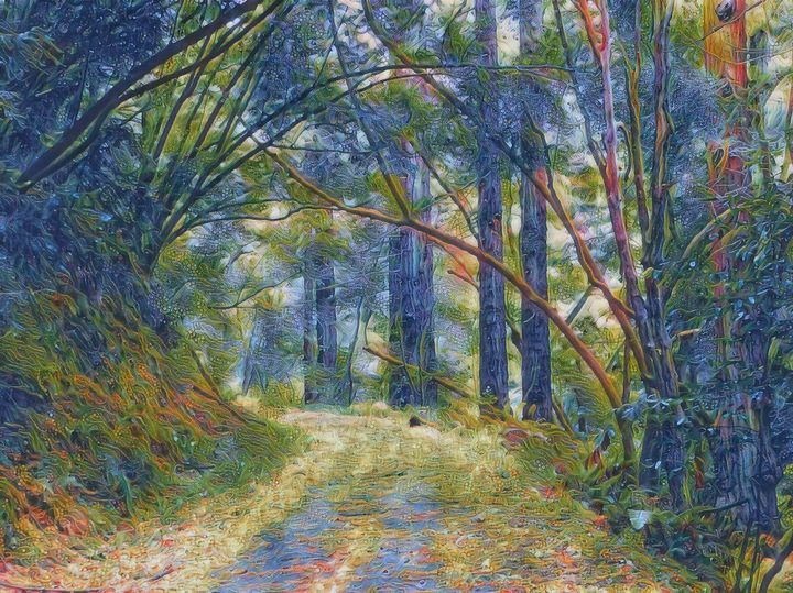 The Wooded Path - Markell Smith Gallery