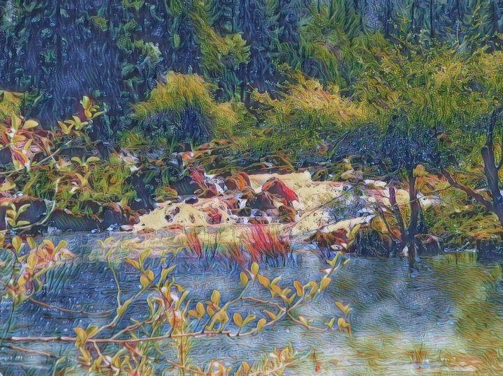 The Stream - Markell Smith Gallery