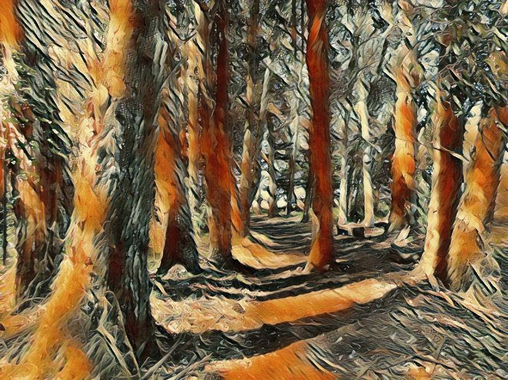 The Beautiful Woods - Markell Smith Gallery