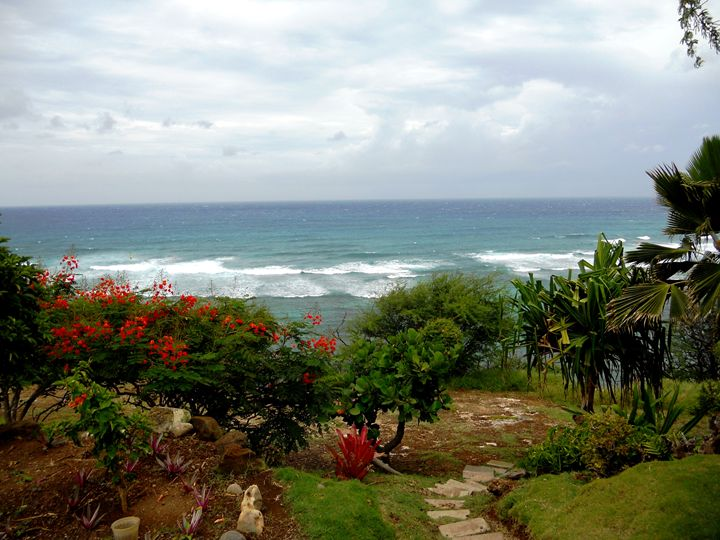 The Coast in Oahu - Markell Smith Gallery