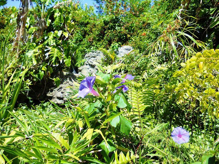 Tropical Garden - Markell Smith Gallery