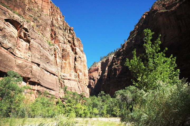 Zion Park - Markell Smith Gallery
