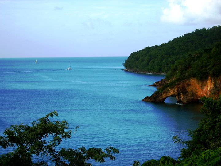 St Lucia Cove - Markell Smith Gallery