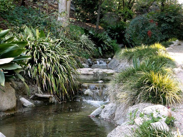 The Garden Stream - Markell Smith Gallery