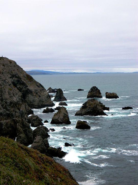 Bodega Bay - Markell Smith Gallery