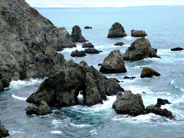 Bodega Coast - Markell Smith Gallery