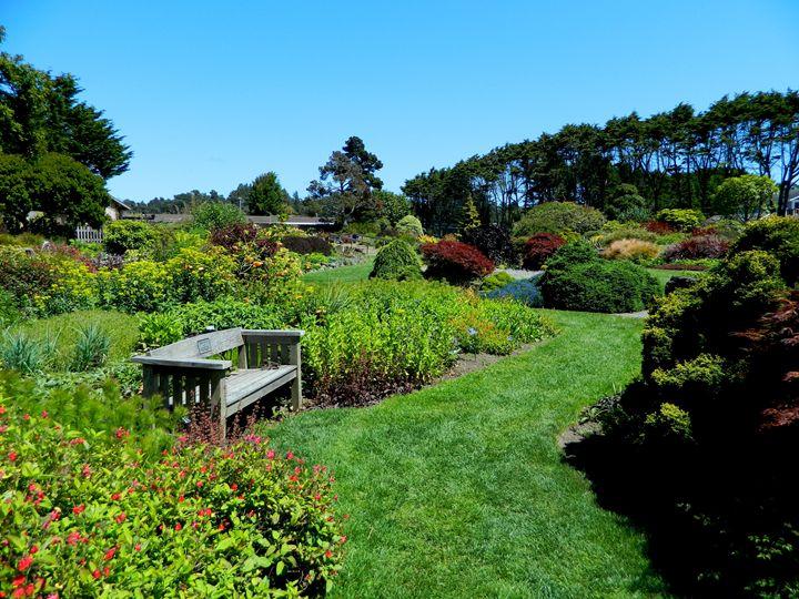 The Garden Bench - Markell Smith Gallery
