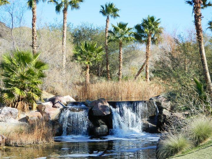 The Desert Falls - Markell Smith Gallery