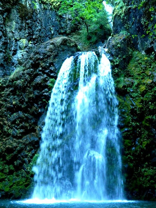 Susan Creek Falls - Markell Smith Gallery