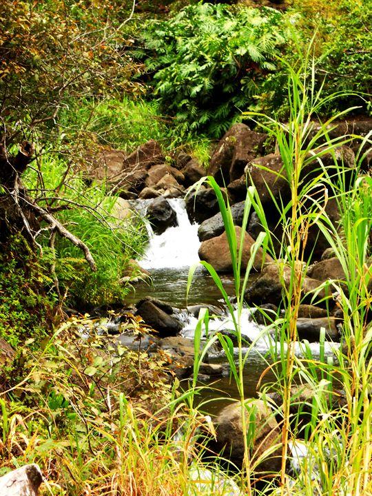 Maui Creek Falls - Markell Smith Gallery