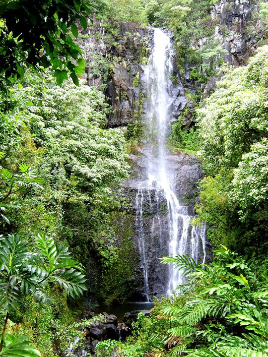 Maui Falls - Markell Smith Gallery