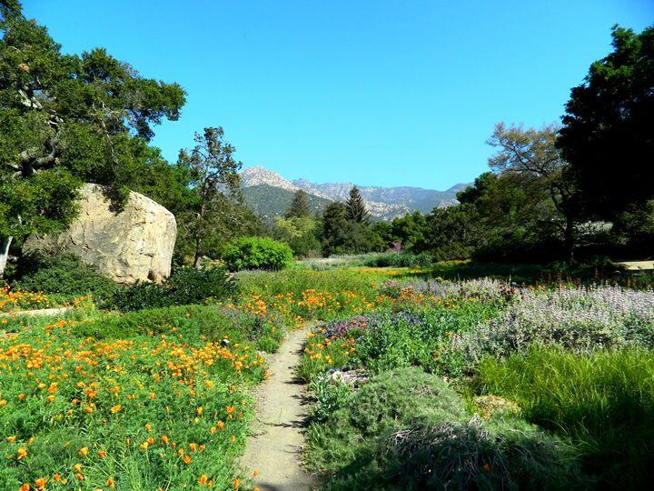 Botanical Garden of Santa Barbara - Markell Smith Gallery