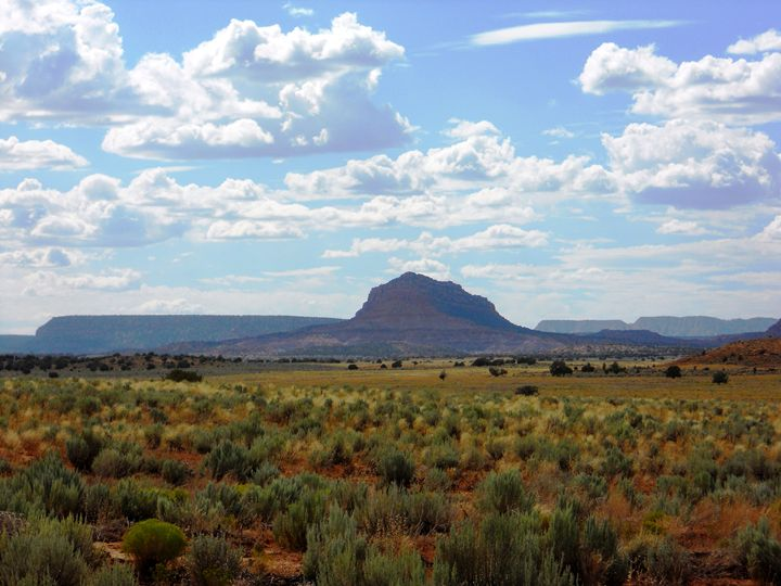 The Plain in Utah - Markell Smith Gallery