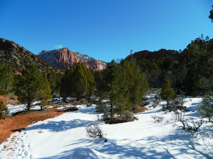 Kolob Canyon - Markell Smith Gallery