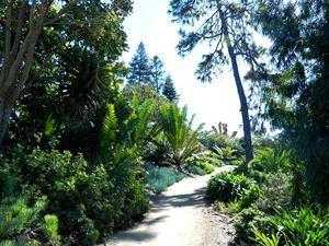 The Botanical Path