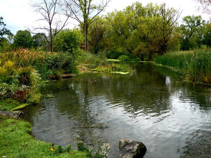Garden Pond - Markell Smith Gallery