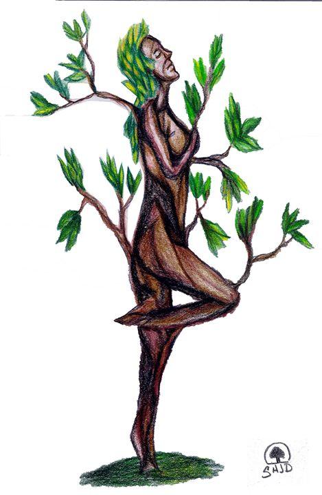 Girl tree young mangroves - Sajdartecreativo