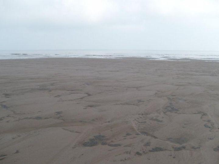 Maplethorpe Beach - Tempia