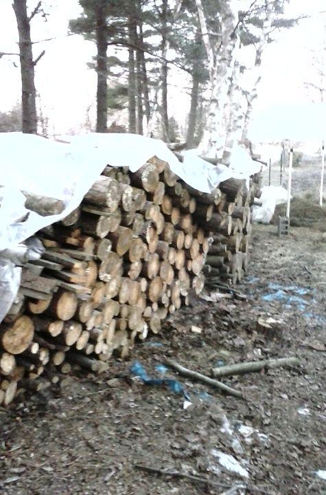Wood Stacks - Tempia