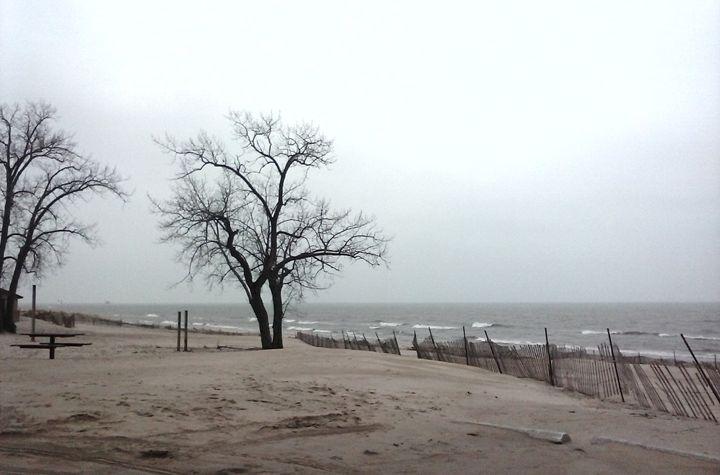 North Shore Beach - Tempia