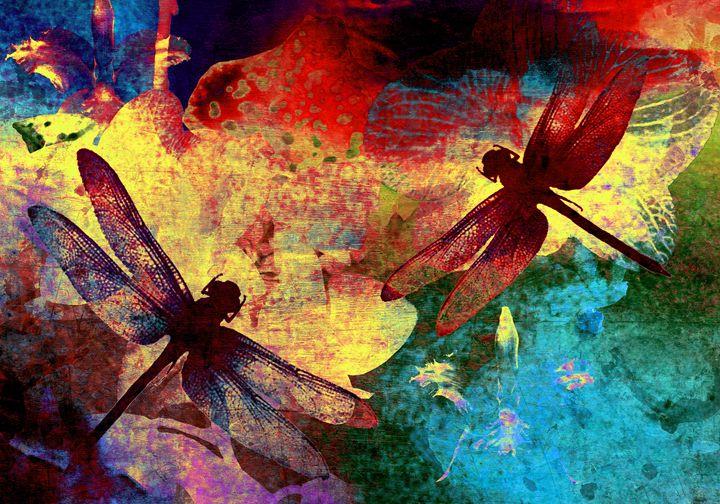 Dragonflies and Orchids - VITTAvittoria