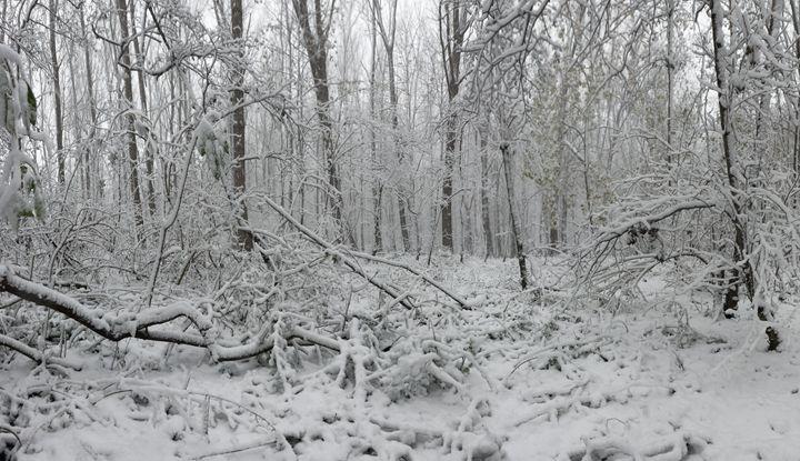 Fallen in white - eriktanghe