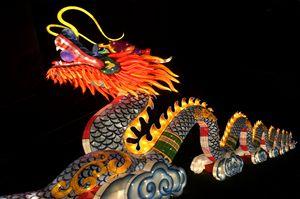 Chinese Dragon - eriktanghe