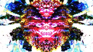 Petal Pareidolia