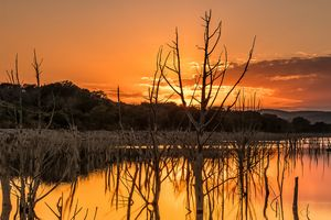 Fire and Water - Tales of Texas Photography