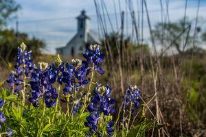 Bluebonnet Chapel