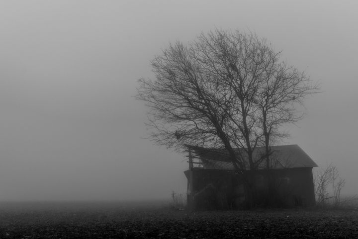 Misty Remains - Tales of Texas Photography