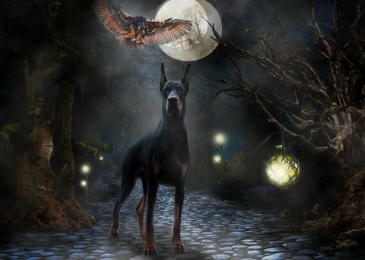 Magical night - Digital Animals Art