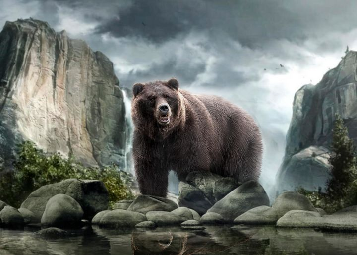 Bear - Digital Animals Art
