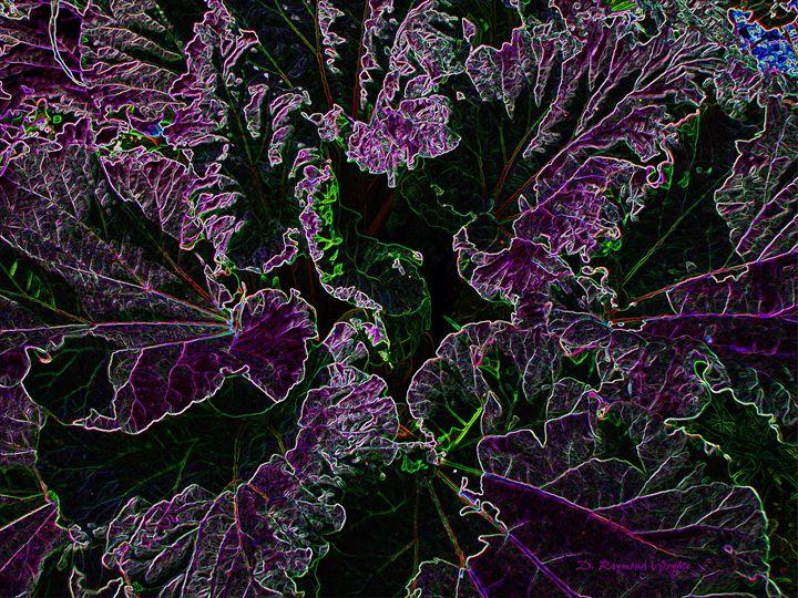 Neon Rhubarb - D. Raymond-Wryhte