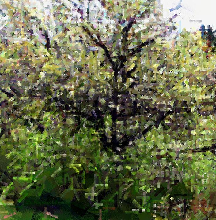 Oak in Spring - D. Raymond-Wryhte