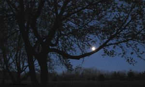 Nightfall - D. Raymond-Wryhte