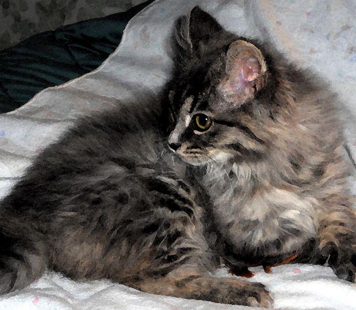 Feline Beauty - D. Raymond-Wryhte
