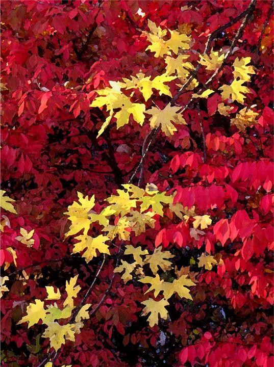 Yellow on Red 2 - D. Raymond-Wryhte