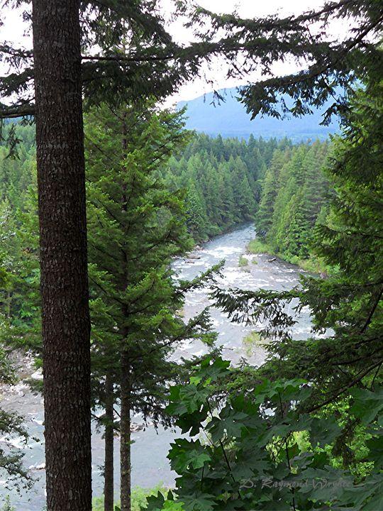 Roaring River 2 - D. Raymond-Wryhte