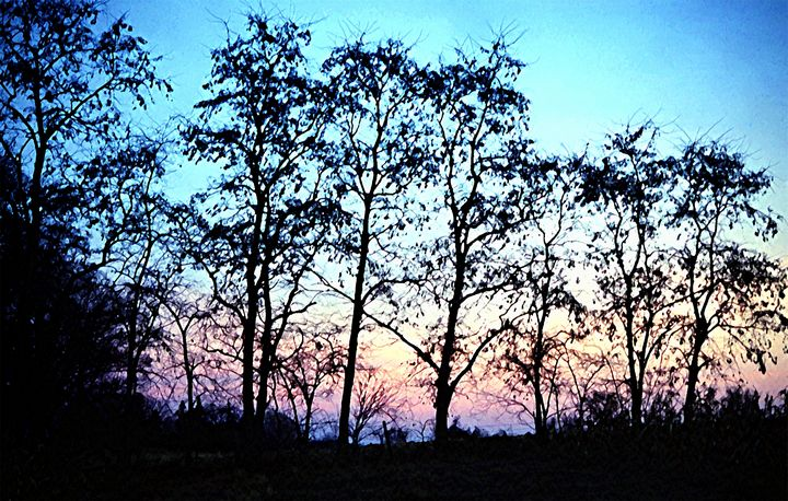 Dawn - D. Raymond-Wryhte
