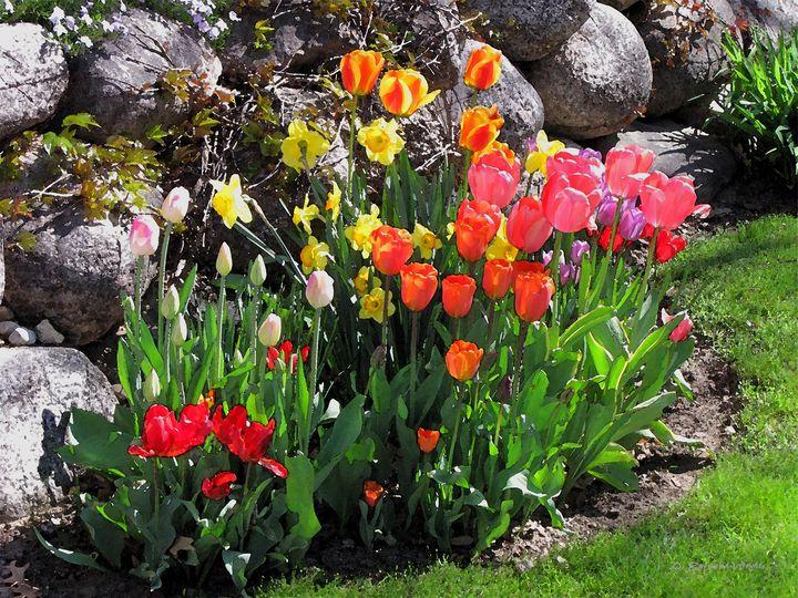 Spring Classic 3 - D. Raymond-Wryhte