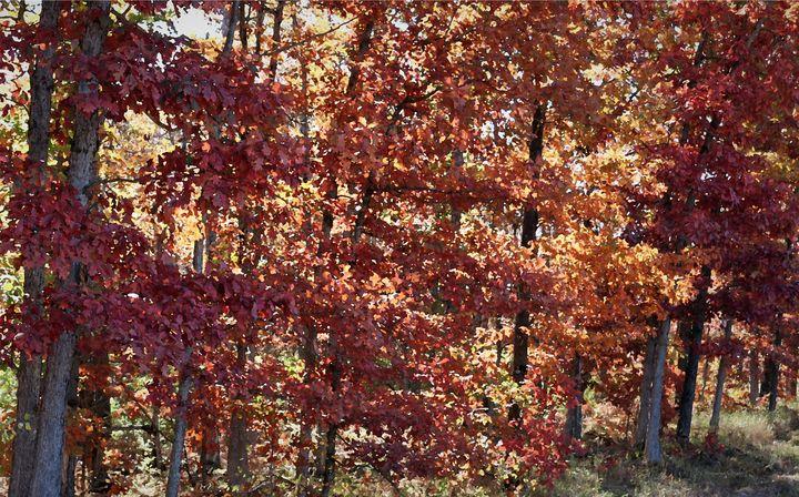 Red Oaks 1 - D. Raymond-Wryhte
