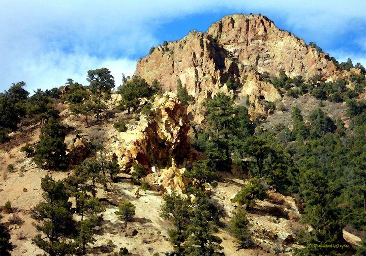 Outback New Mexico - D. Raymond-Wryhte