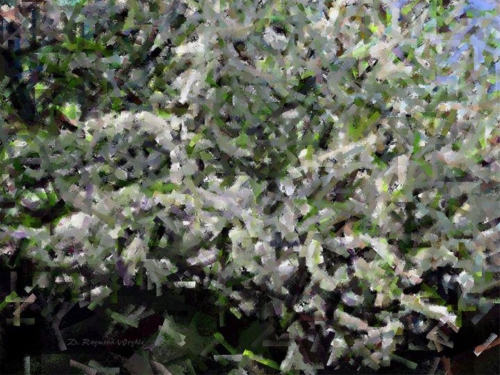 Pear Blossums - D. Raymond-Wryhte