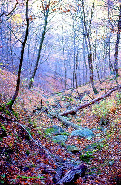 November Morning - D. Raymond-Wryhte
