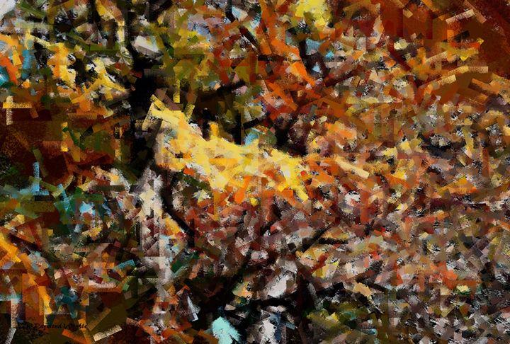 Oak Textures - D. Raymond-Wryhte