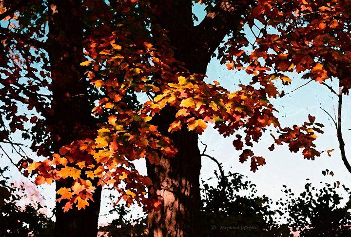 oak silhouette - D. Raymond-Wryhte