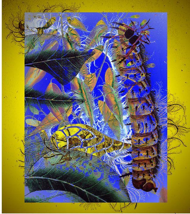 Caterpillar - Marie C. Jones Digital Art