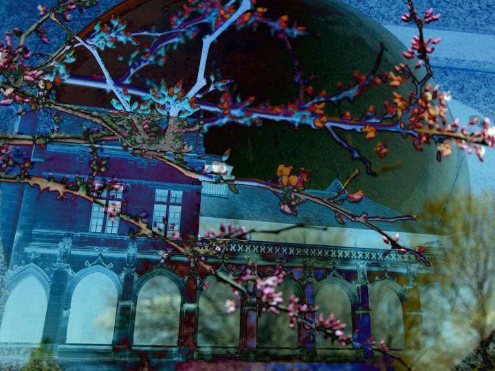 Redbud Boughs - Marie C. Jones Digital Art